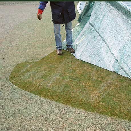 Evergreen Turf Cover Effekt